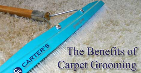 carpet grooming, carpet care, carpet cleaning