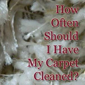 How often should i have my carpet professionally cleaned for How often should you replace carpet