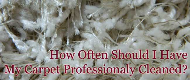 How Often Should I Have My Carpet Professionally Cleaned
