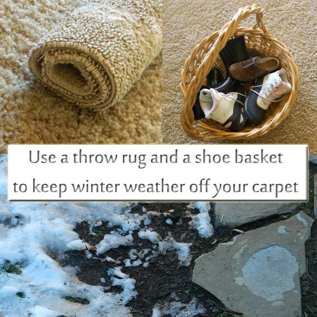 Save Your Carpet From Winter Weather Carter S Carpet
