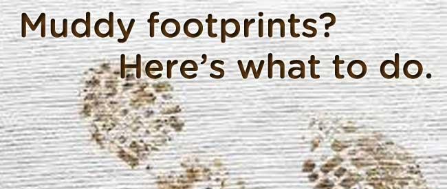 Got Muddy Footprints On Carpet Get Advice From An Expert