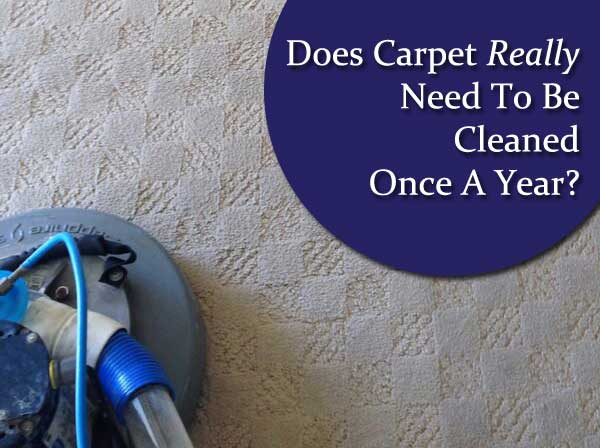 carpet cleaning, carpet care, steam cleaning