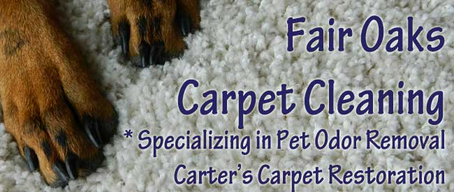 Fair Oaks Carpet Cleaning