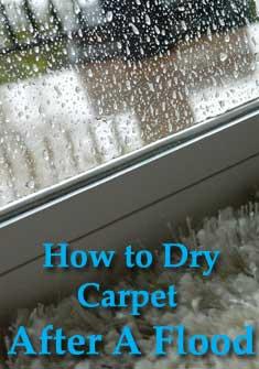 storm water flood, drying carpet, carpet flood, wet carpet, how to dry carpet