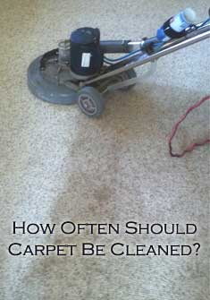 how often should carpet be cleaned