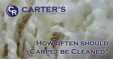 How Often Should Carpet Be Cleaned Carter S Carpet