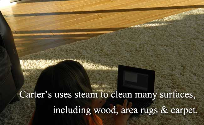 clean wood floor and area rug.