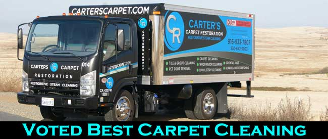 Voted Best Local Carpet Cleaning