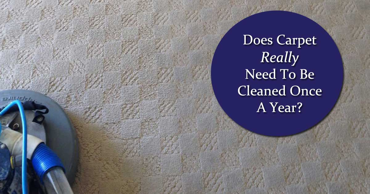 carpet care, carpet cleaning