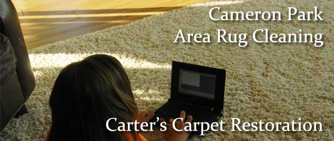 rug cleaning, steam cleaning, carpet cleaning,