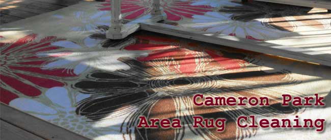 rug cleaning, area rug cleaning, oriental rug cleaning,