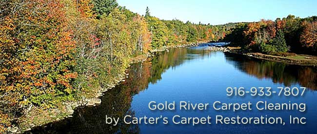 Gold River Carpet Cleaning, Carpet Cleaning Gold River, Gold River, Carpet Cleaning