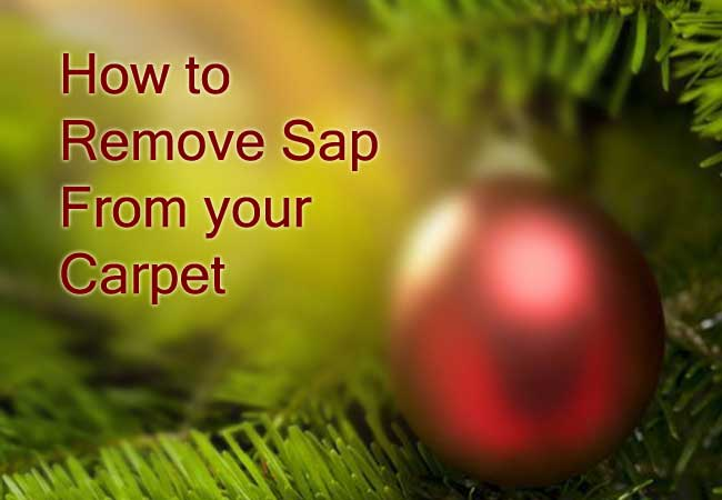 remove sap from carpet