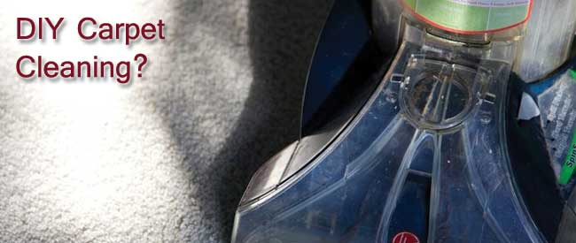 DIY carpet cleaning, should i clean my carpet with a rug doctor,