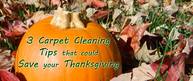 carpet cleaning, holiday cleaning, thanksgiving tips, carpet spot removal