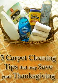 carpet clean up tips, carpet cleaning, holiday cleaning, thanksgiving tips, carpet spot removal
