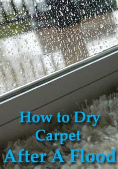 storm water flood, drying carpet, carpet flood, wet carpet, how to dry carpet