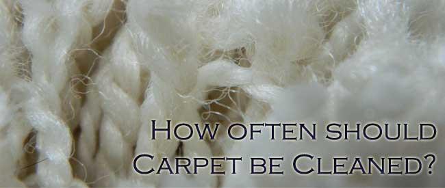 How Often Should Carpet Be Cleaned Carter S