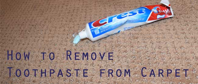 remove toothpaste from carpet, carpet cleaning tips, carpet care