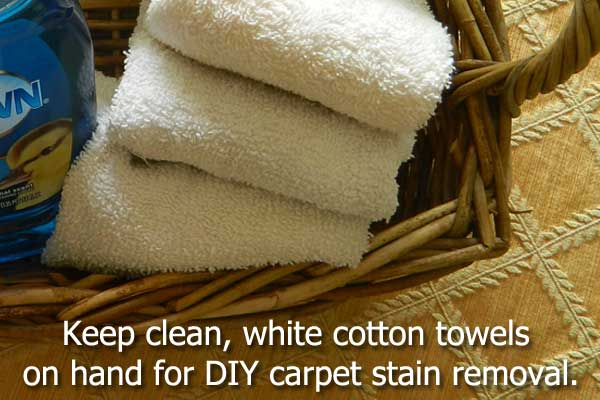 DIY Carpet Stain Removal
