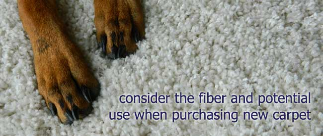 purchasing new carpet tips