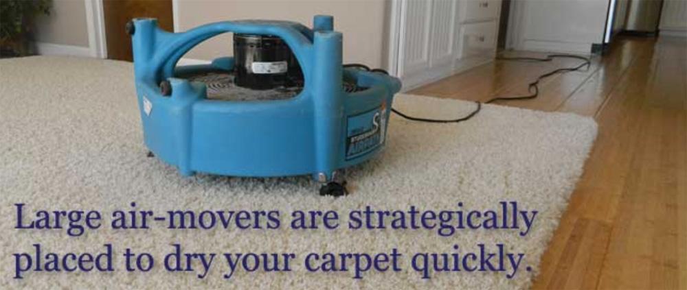 restaurant carpet cleaners El Dorado Hills CA